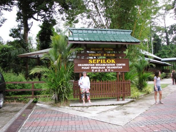 Orangutan Rehabilitation Centre IMG_7471.jpg