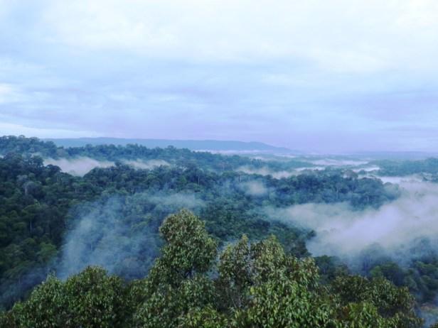 Limbang view  IMG_0287.JPG