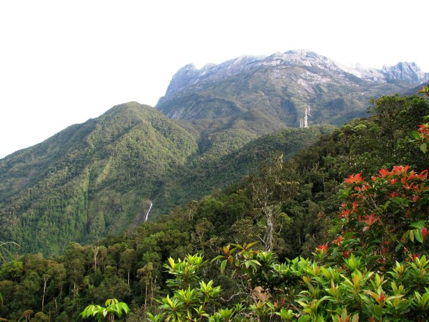 Kinabalu Photo from Kiau Gap IMG_1095.jpg