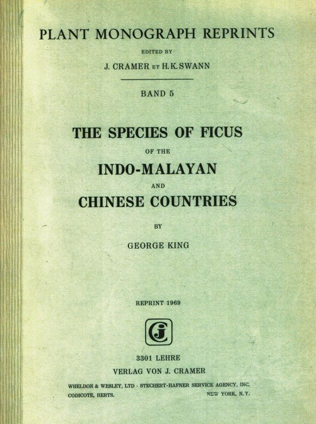 King (1887) The Species of Ficus of the Indo-Malayan and Chinese Countries Enhanced.jpg