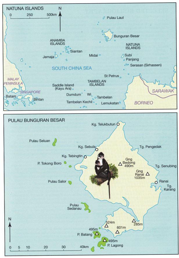 Natuna Islands