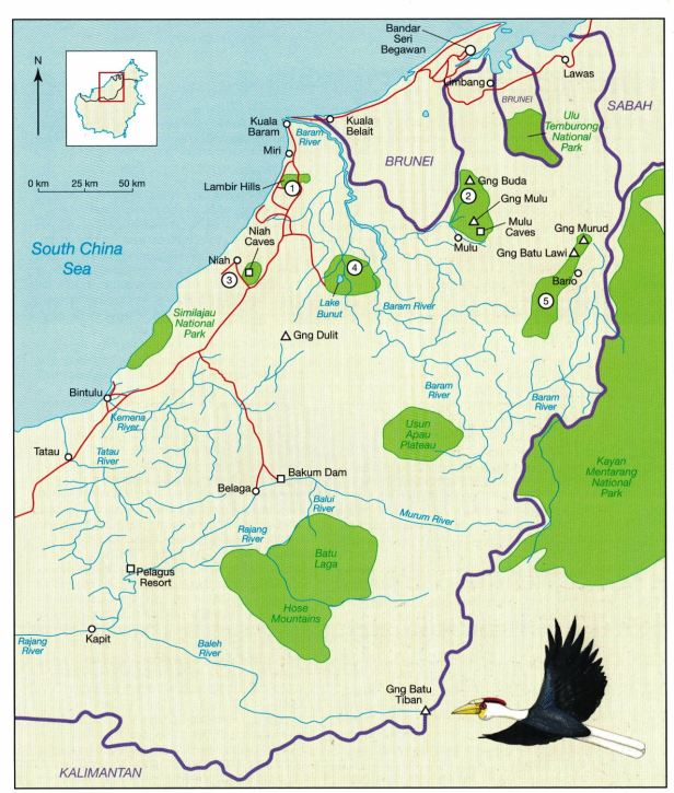 north Sarawak Map