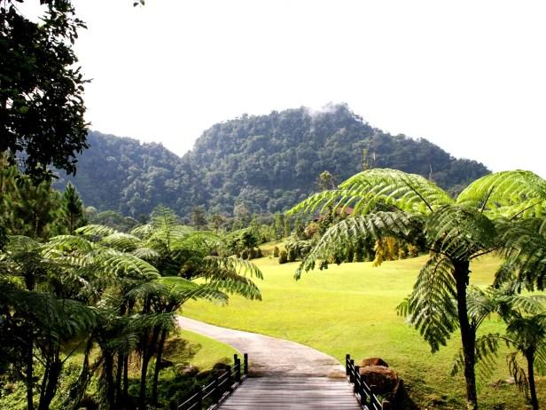 01 Borneo Heights IMG_4263.jpg