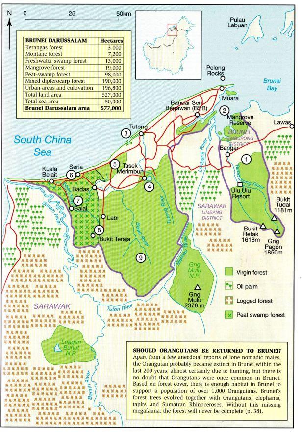370 Brunei Map.jpg