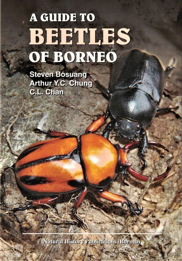 Beerles of Borneo.jpg