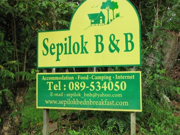 Sepilokj-B-B-IMG_7035.jpg