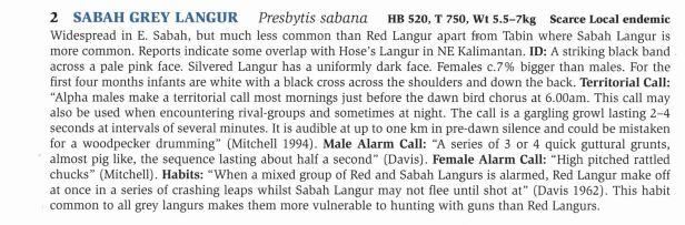 164- Sabah Langurs text - .jpg