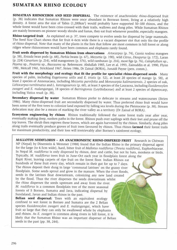296-297 Rhino ecology - Copy
