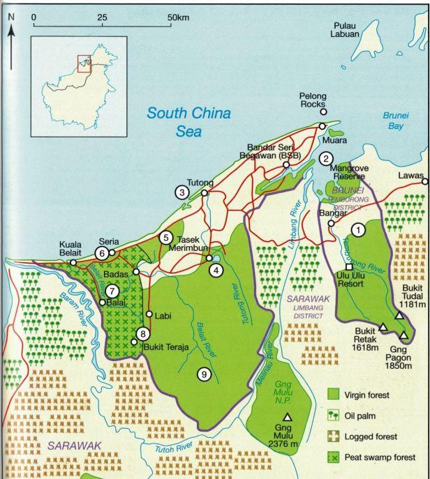 Brunei  whole .jpg