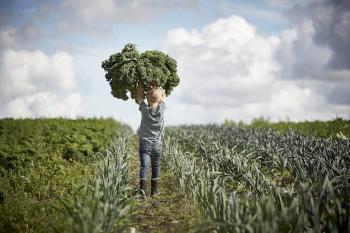 Dreng med økologisk kål