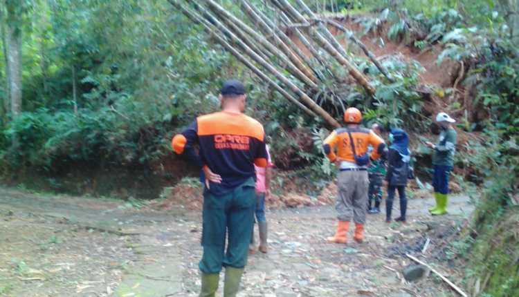 Rumpun Bambu terbawa tebing longsor di Salaman (1/1/2021)-(Foto: DOk BPBD)