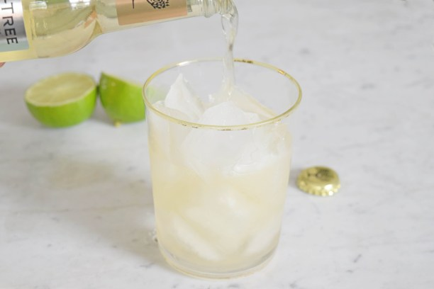 jenever ginger ale cocktail