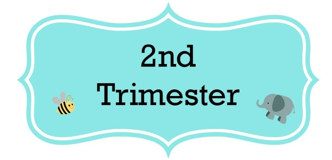 Pregnancy Update Journal: 2nd Trimester Wrap Up