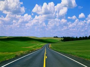 career_plan_roadmap