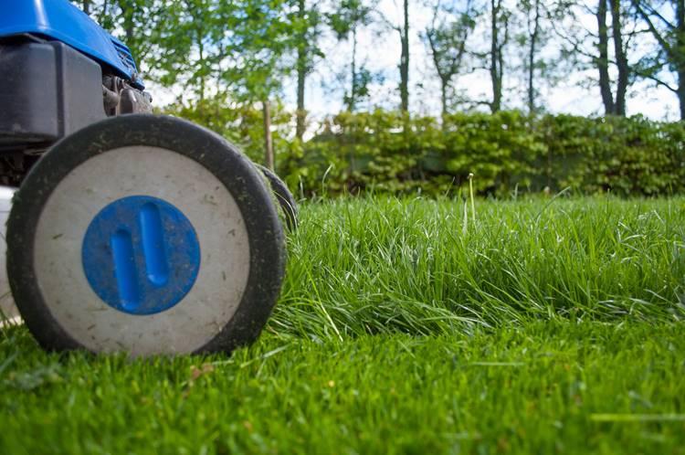 Czas w ogrodzie