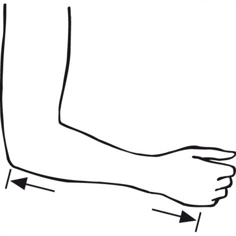 Elbow to Hand Measuremnt