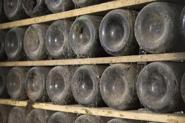bor évjárat