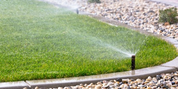 sprinkling and watering lawn