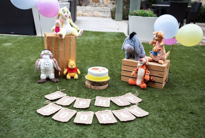 West's Hundred Acre Wood – A Cake Smash!