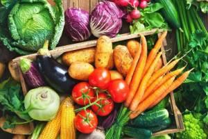 Nama jenis sayur sayuran hijau