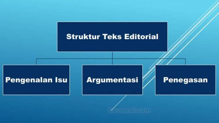Contoh Teks Editorial Struktur Teks Editorial