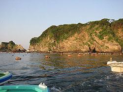 勝山カカリ釣り