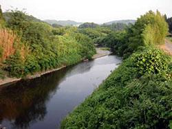 7月の湊川