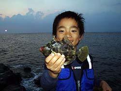 カワハギ釣果