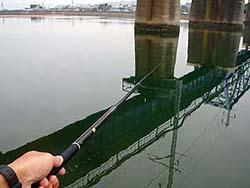 湊川河口でハゼ釣り