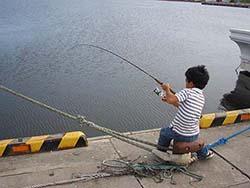 北海道道東 岸壁釣り