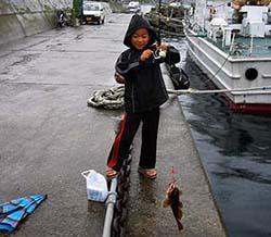 北海道釣り カレイメバル