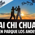 Tai chi chuan en Parque Los Andes
