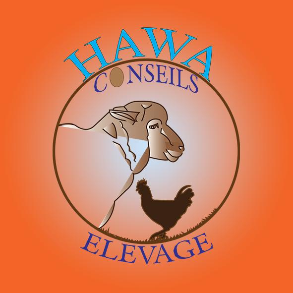 Logo Hawa conseils elevage par Boss Arts