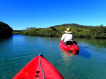 Our Leeke's Creek kayaking adventure