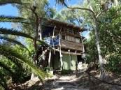 Percy's treehouse.