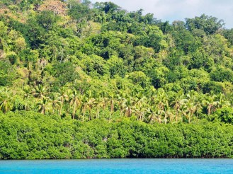 Such lush green vegetation on the islands. We learnt later they hadn't had rain for months.