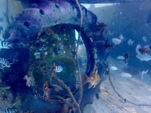 Under the resort jetty