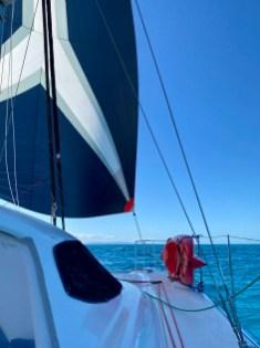 Great kite run down Moreton Bay