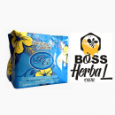 Avail Biru Day Use Sanitary Pad Feminine Comfort Pembalut Herbal Original