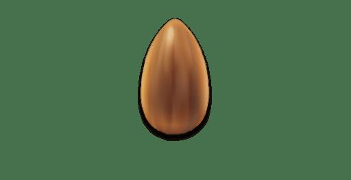 Սերմ_սերմեր_seed_семена