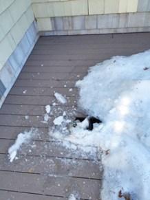 Deck ice damage