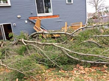 Deck demolished by tree