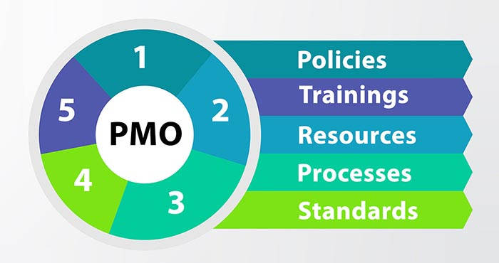 Project Management Office (PMO) Setup Consultancy