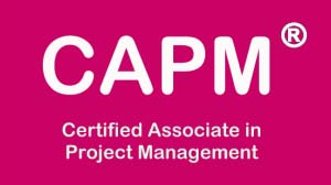 Certified Associate in Project Management Course in Dubai