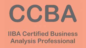 CCBA® Training - Certification of Competency in Business Analysis Training Course and CCBA Exam Prep Course in Dubai