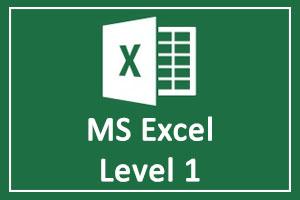 Microsoft Excel Basic Level 1