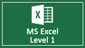 MS Excel Level 1 Course in Dubai