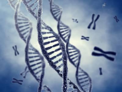 b2ap3_thumbnail_DNA-shutterstock_107069489