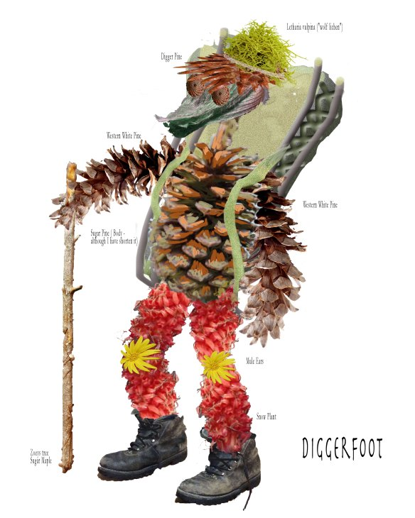 DiggerFoot with ID Labels