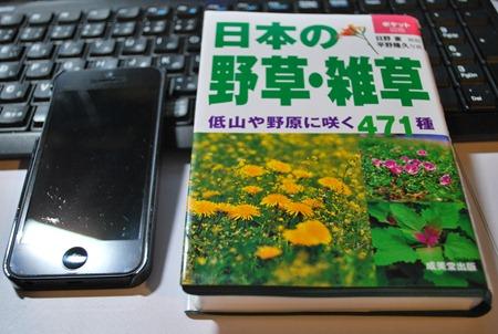 DSC_5803